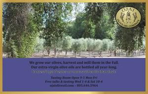 Ojai Olive Oil display ad