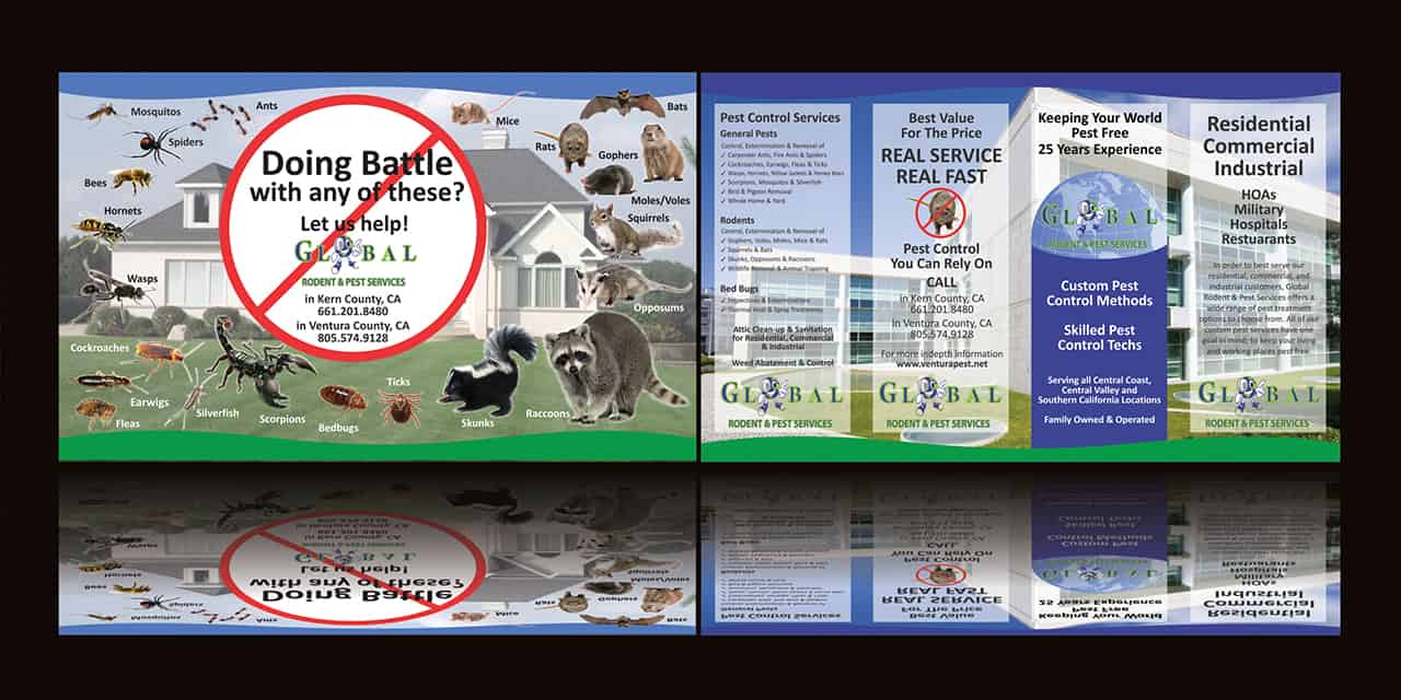 Global Pest brochure