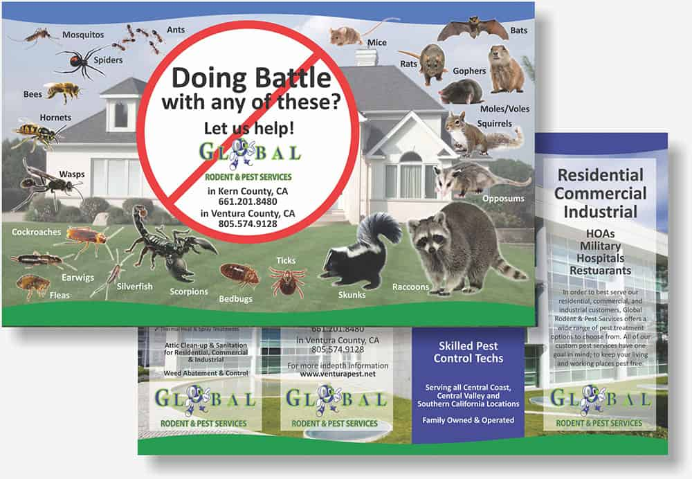 Global Rodetn & Pest Control brochure