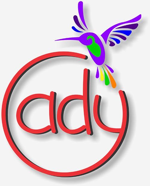 ady logo